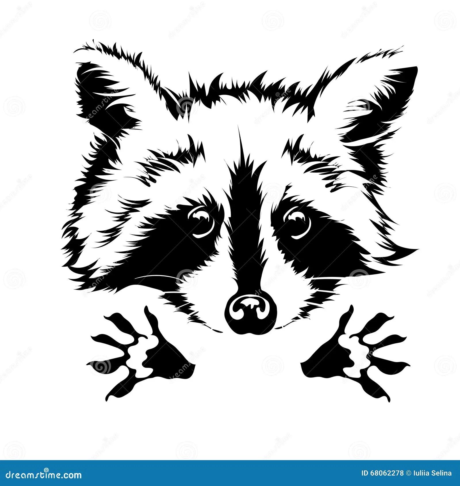Vector Hug Raccoon Vector Illustration