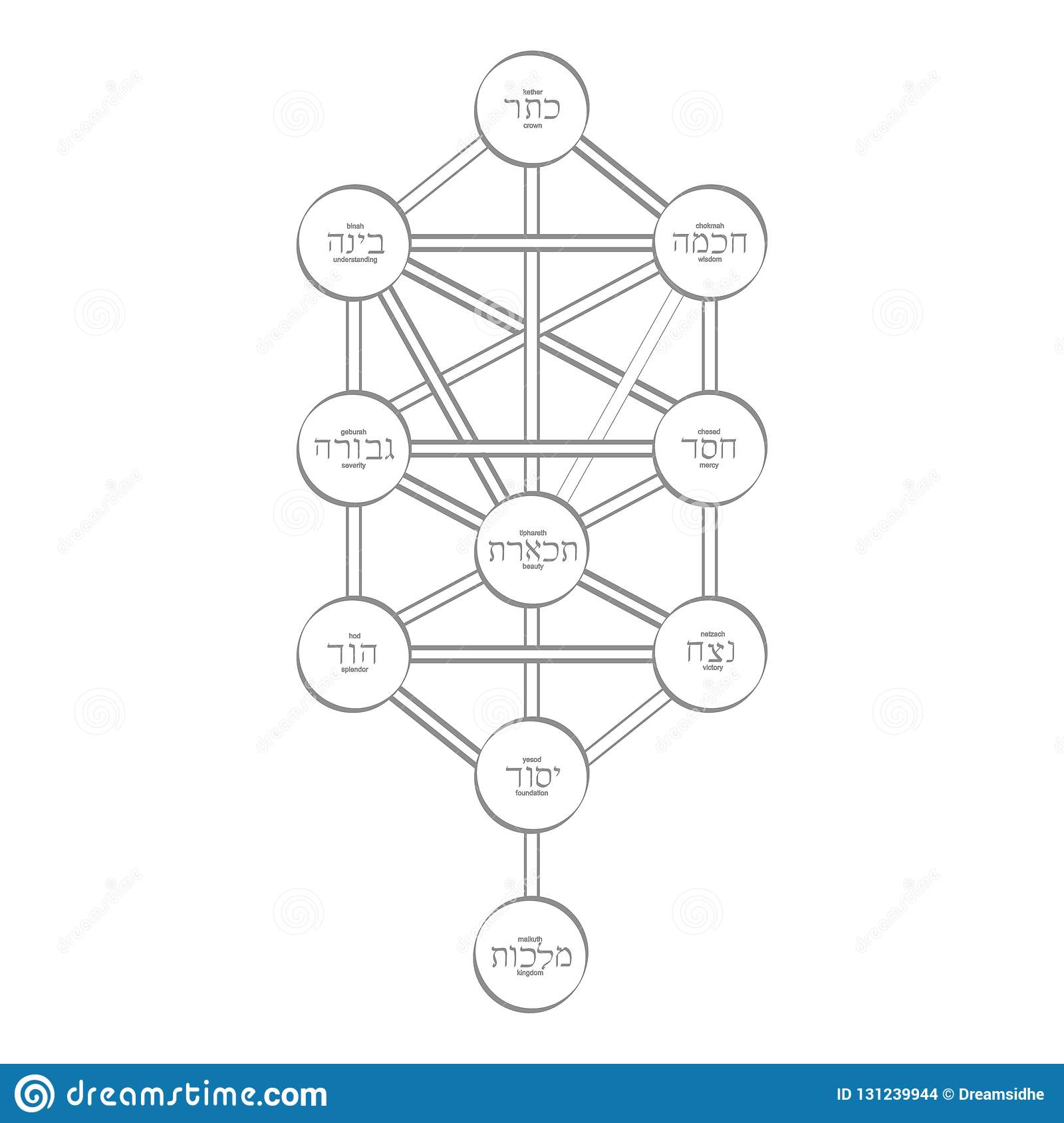 hight resolution of vector icon with tree of life kabbalah symbol