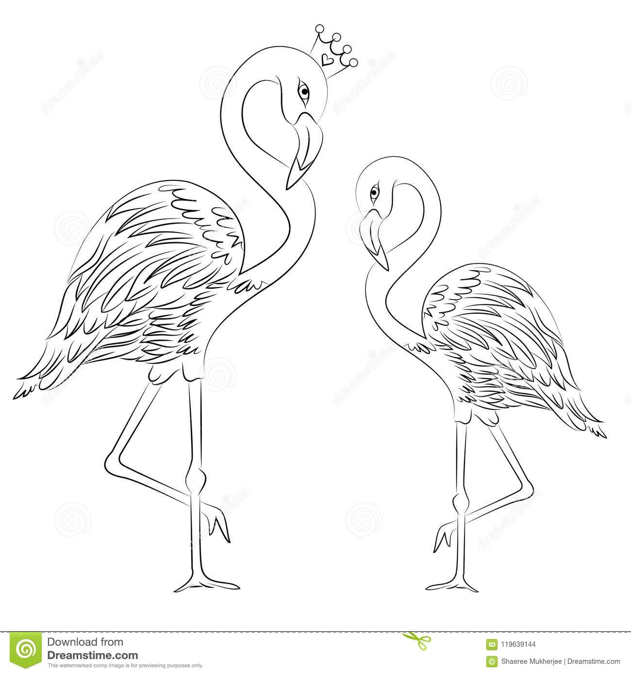 Vector Illustration Flamingos Coloring Page Stock