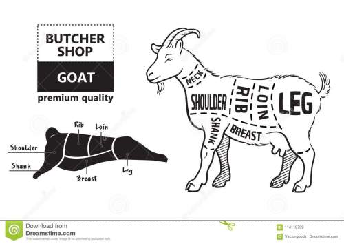 small resolution of vector illustration goat cuts diagram or chart goat black silhouette