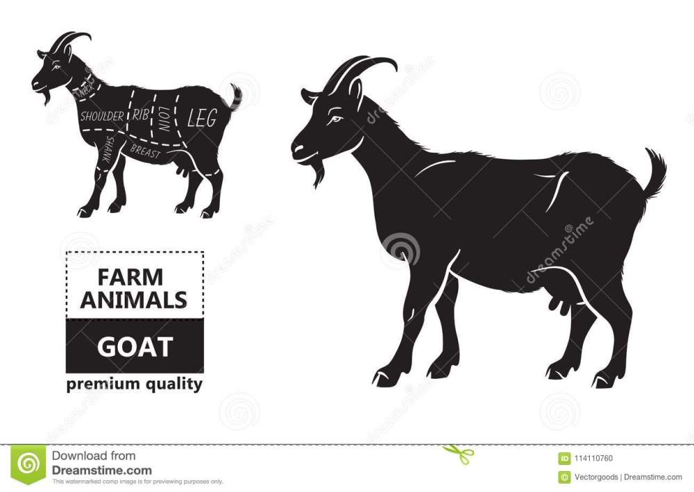 medium resolution of vector illustration goat cuts diagram or chart goat black silhouette