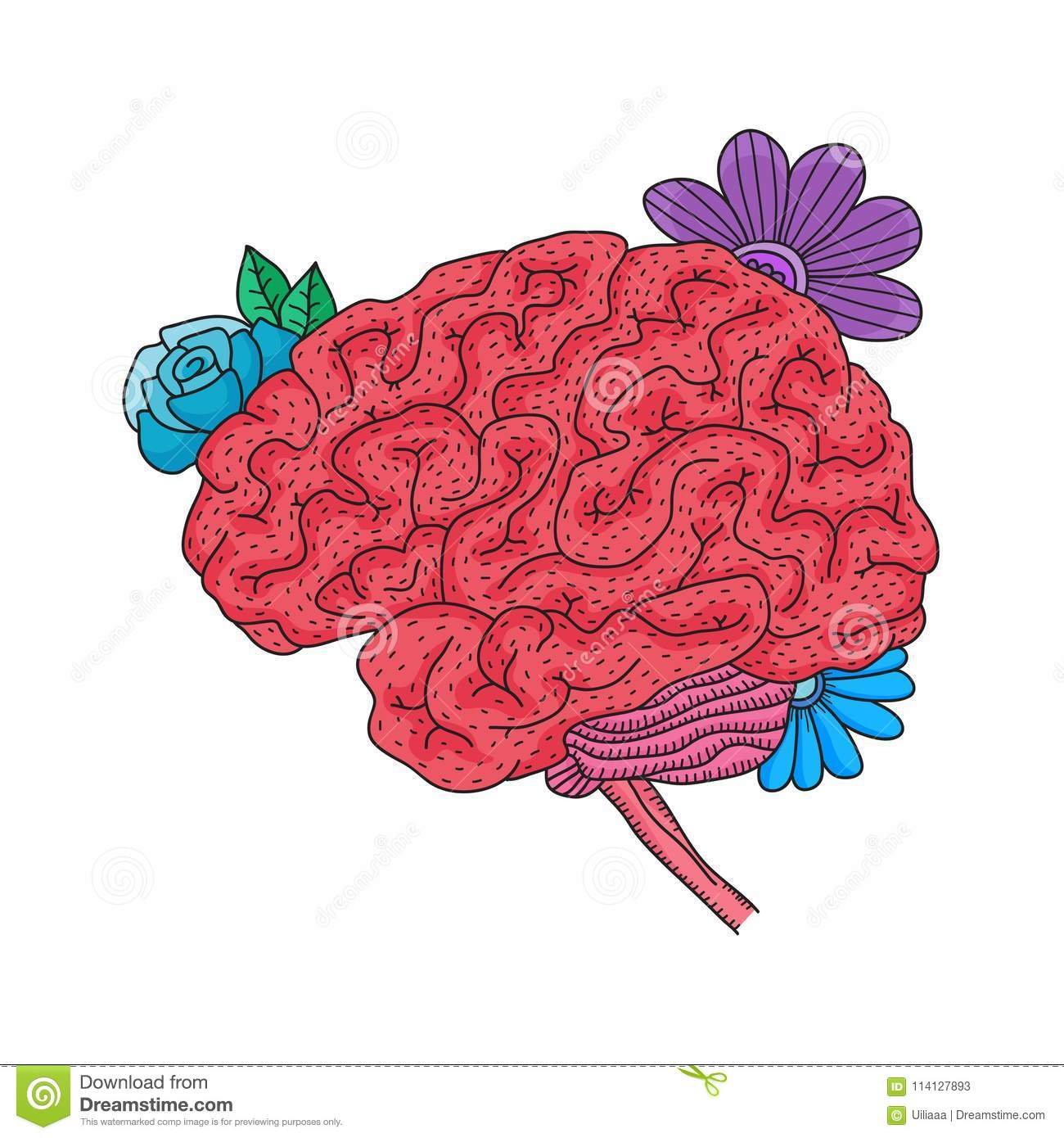 hight resolution of vector illustration of human brain isolated on white background flower throat diagram