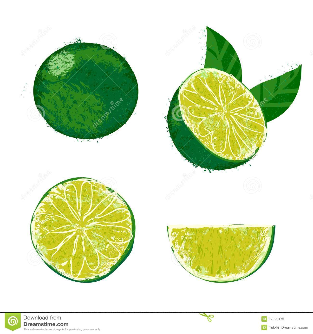 Vector Illustration Of A Lime Fruit Stock Photos Image