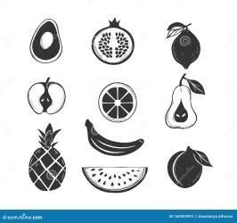 fruits stencils orange vector silhouette apple citrus silhouettes outline