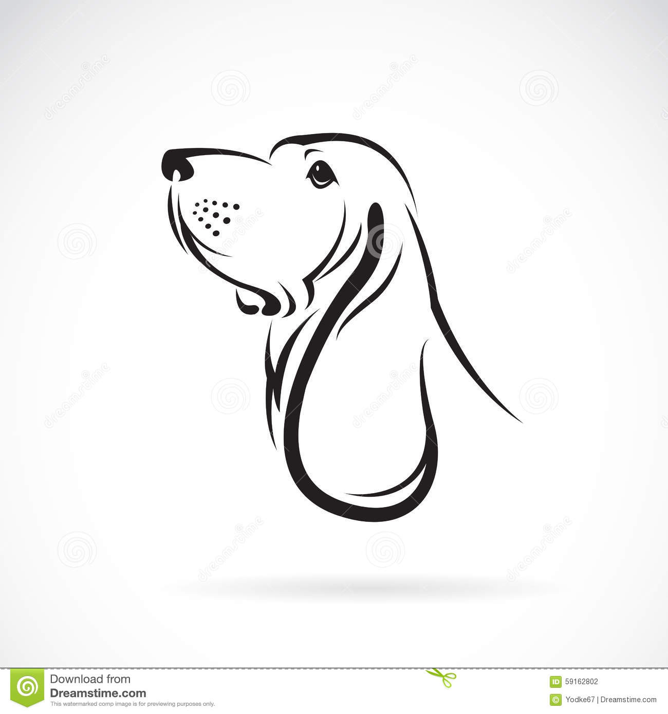 Vector Image Of A Basset Hound Head Stock Vector