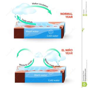 Vector Infographic Cross Section Of El Nino South Stock