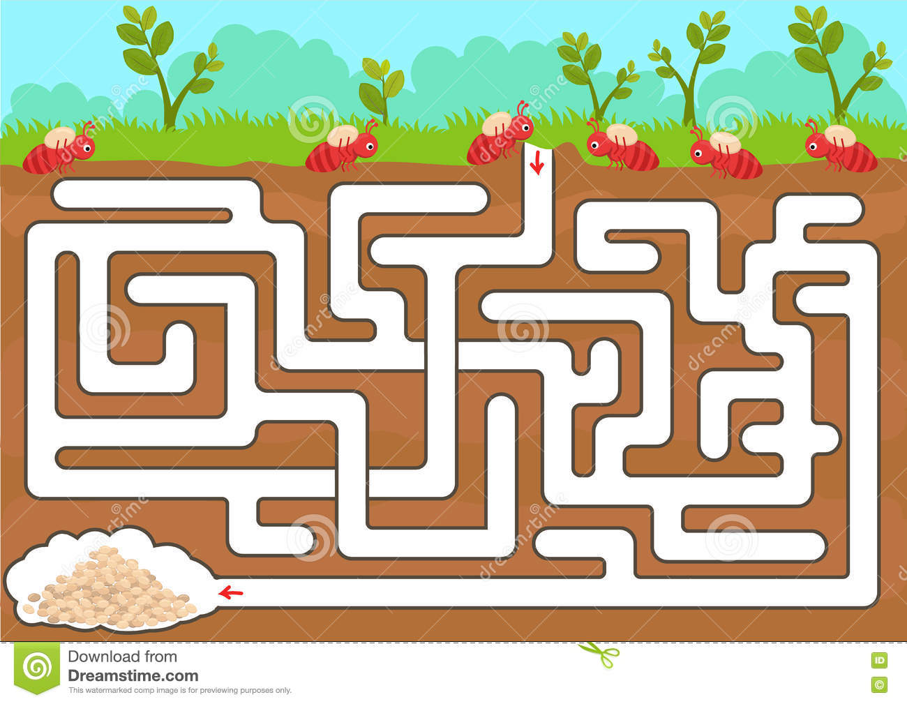 Vector Maze Game With Find Ant Room Stock Vector