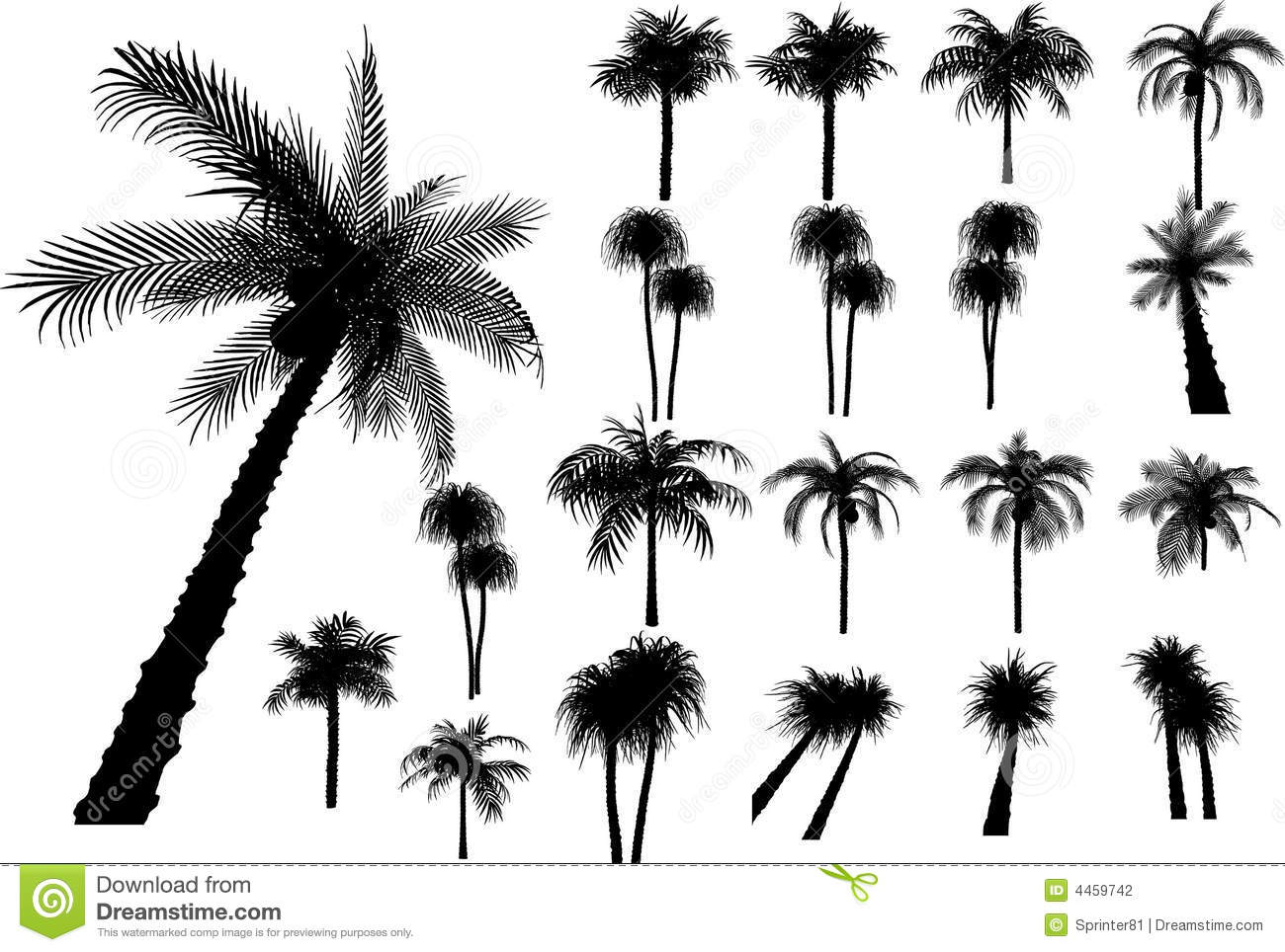 Vector Palms And Trees Stock Vector Illustration Of