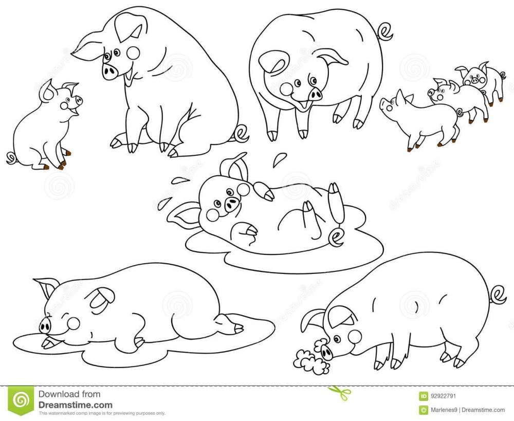 medium resolution of vector black and white cute pigs set pig clipart vector illustration