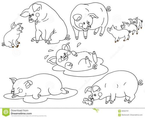 small resolution of vector black and white cute pigs set pig clipart vector illustration