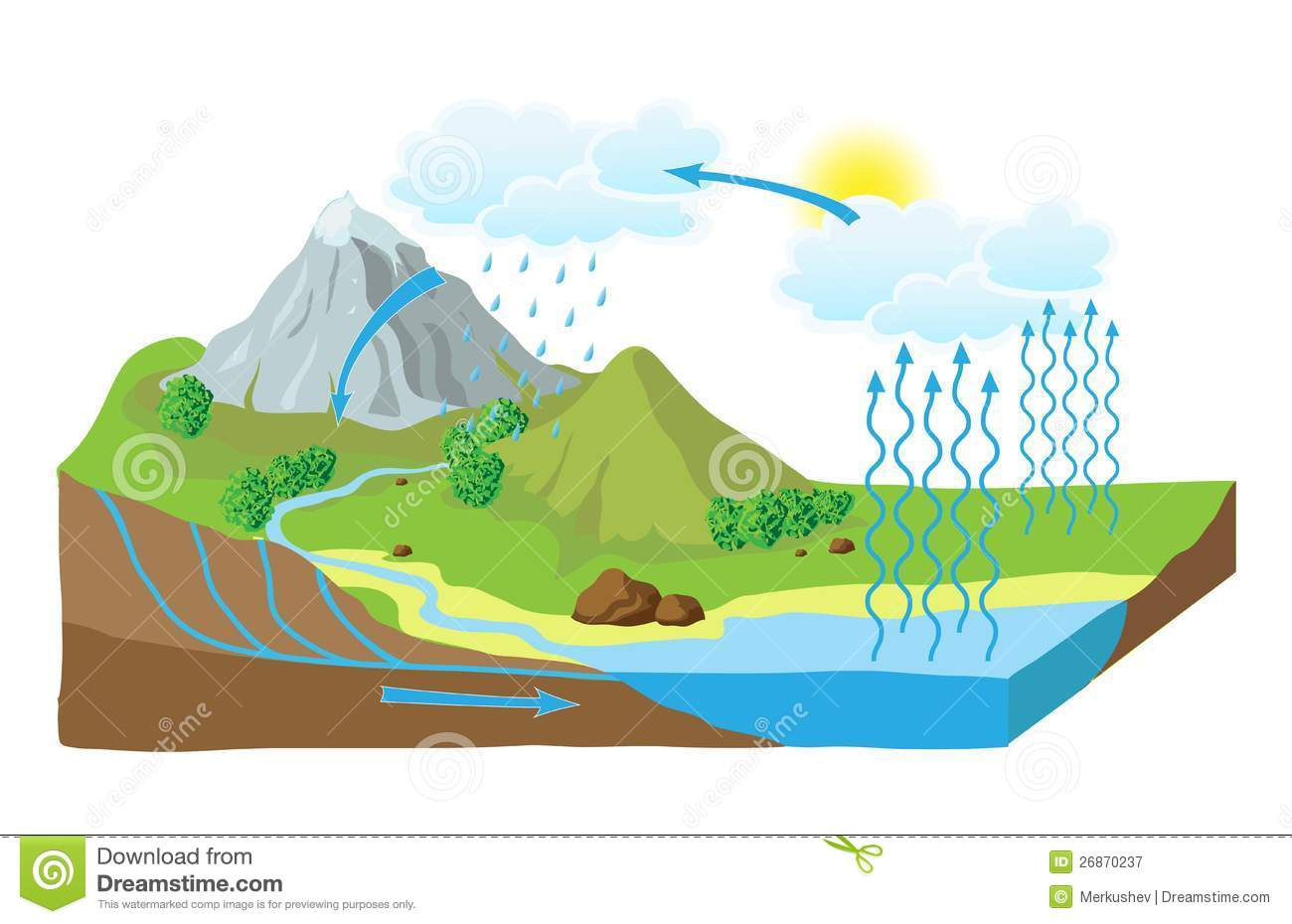 hight resolution of vector schema of the water cycle in nature