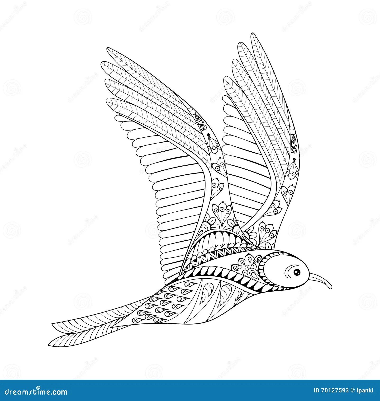 Vector Seagull Zentangle Common Gull Illustration Flying