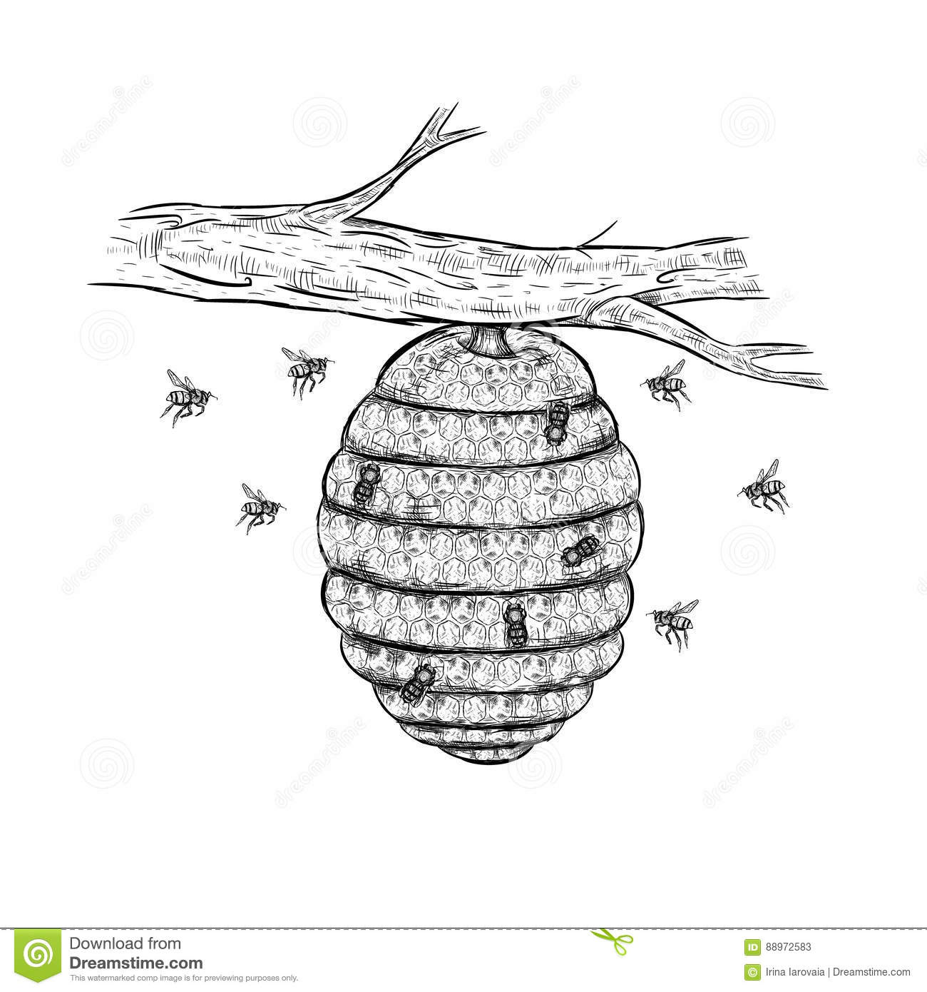 Vector sketch of beehive stock vector. Illustration of