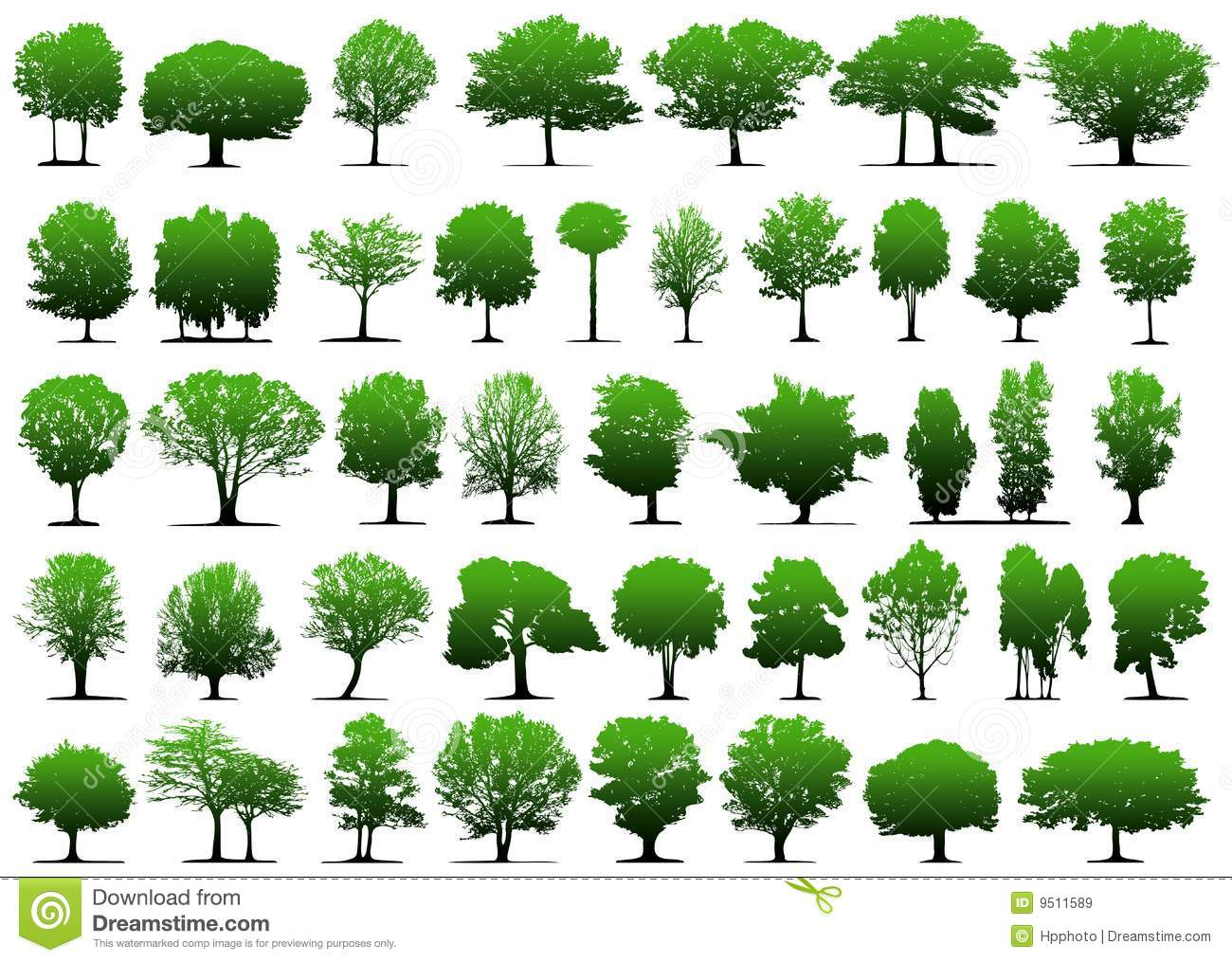 vector trees stock vector