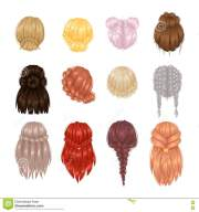 vector woman hairstyle view