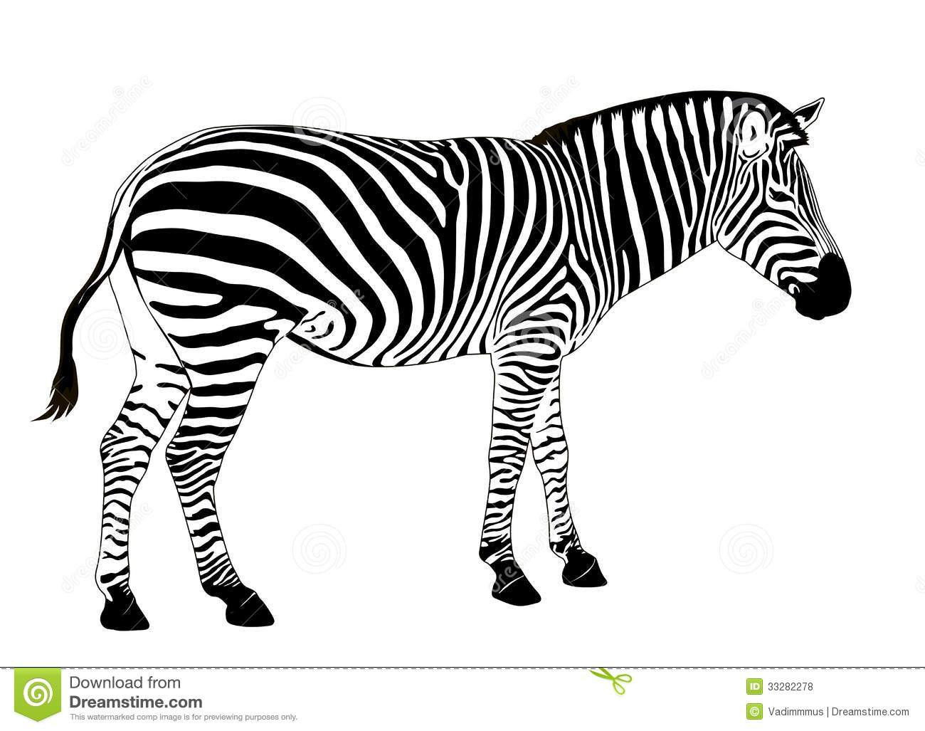 Vector Zebra Royalty Free Stock Photos