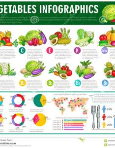 Vegetables infographics vector graph charts or diagrams of consumption vitamines veggies nutrition facts vegetarian healthy food statistics squash also stock rh dreamstime