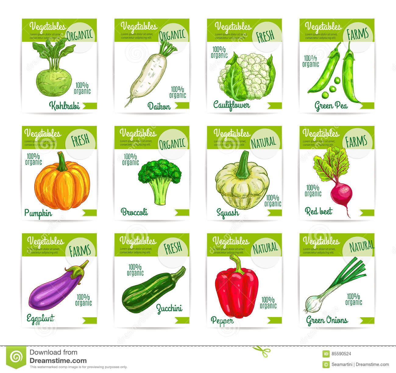 Vegetables Veggies Vector Price Cards Labels Set Stock