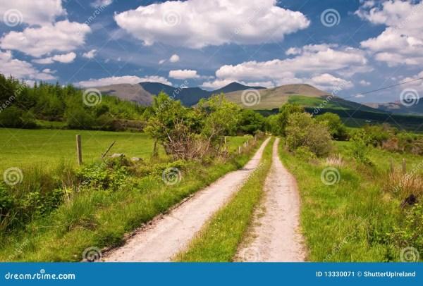 vibrant scenic landscape