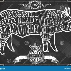 Vintage Lamb Butcher Diagram Mk4 Jetta Headlight Wiring Pork Cuts Get Free Image About
