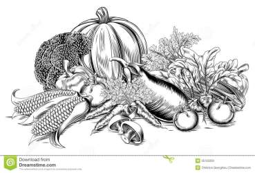 vegetables vegetable garden woodcut produce fresh etching illustration retro print vector fruit illustrations border drawings prints woodcuts royalty food graphicriver
