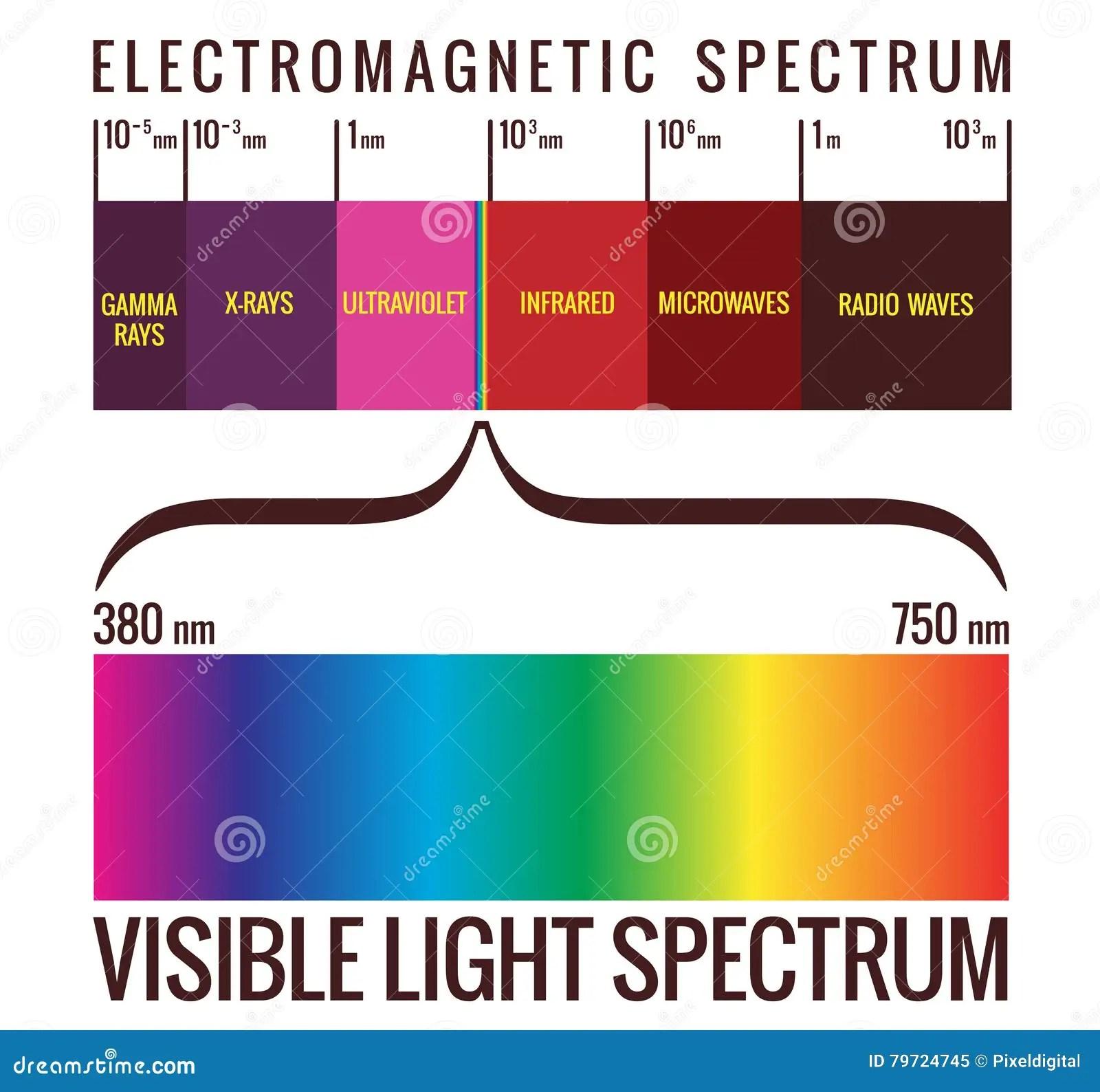 electromagnetic spectrum diagram labeled bmw e61 radio wiring x ray wave radar elsavadorla