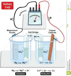 voltaic galvanic cell with copper cathode and magnesium anode salt bridge voltmeter and process of oxidation and reduction diagram for physics and chemistry  [ 1249 x 1300 Pixel ]