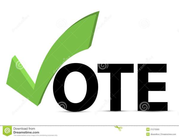 Vote with Check Marks Boxes