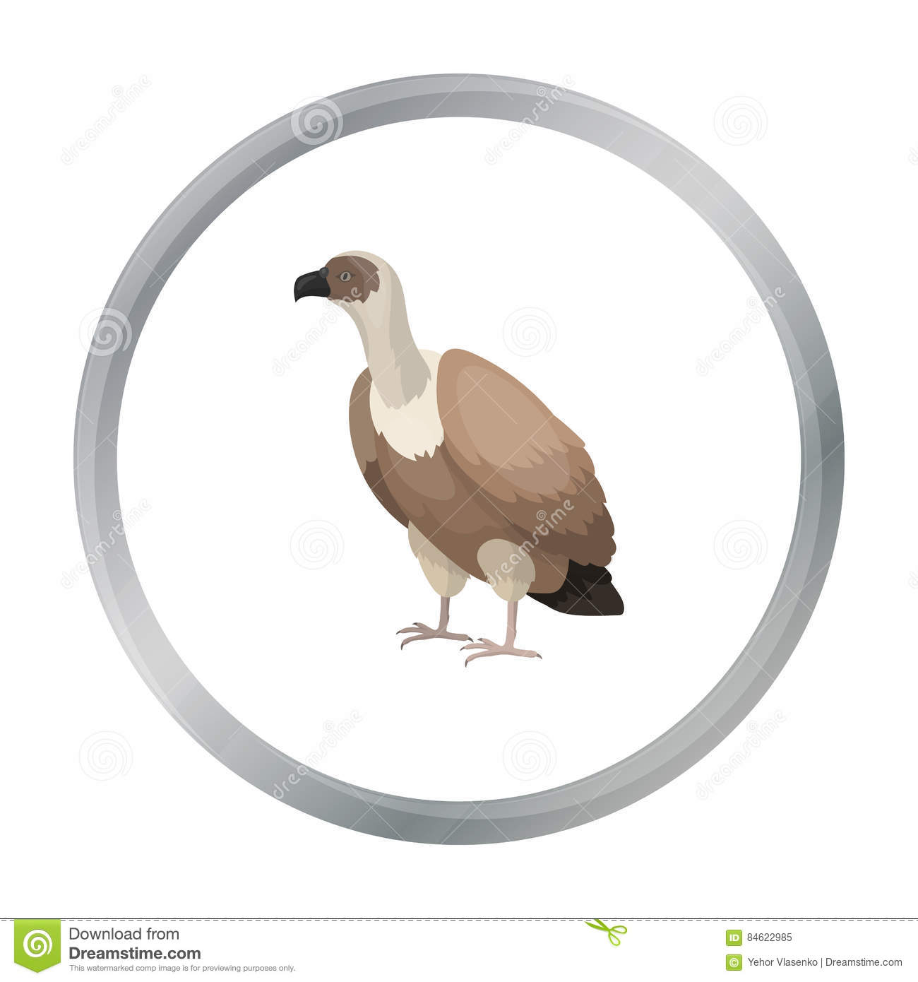 Illustration Of Vulture Vocabulary Part Of Body Vector Illustration