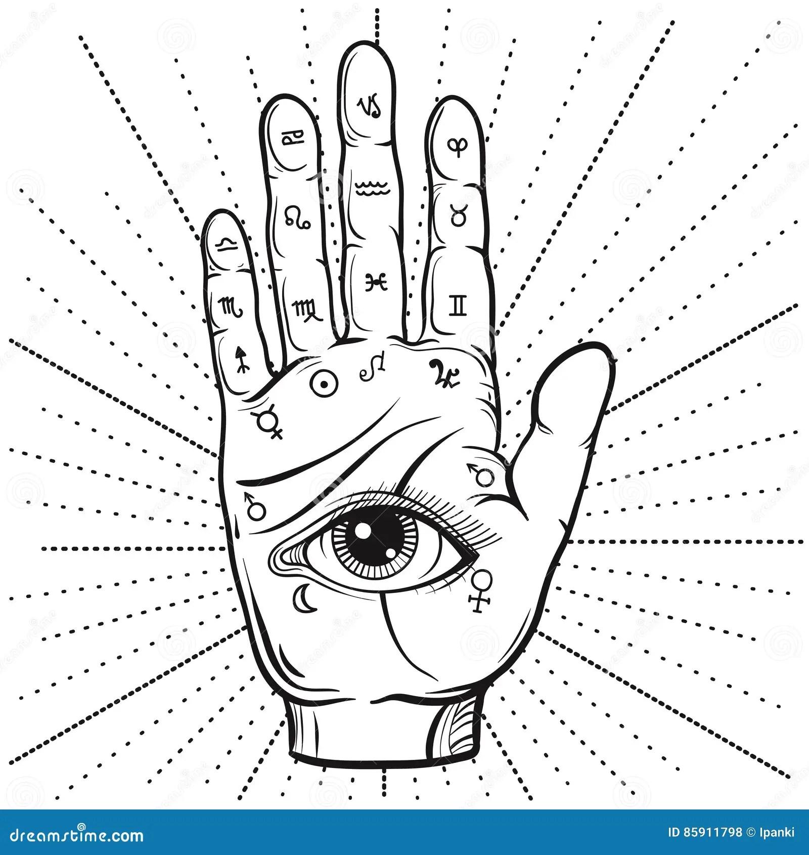 Wahrsager-Hand Mit Handlesekunstdiagramm, Handdrawn Ganz
