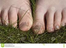 Walking Barefoot In Grass Stock - 2207393