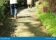 Feet Walking On Path