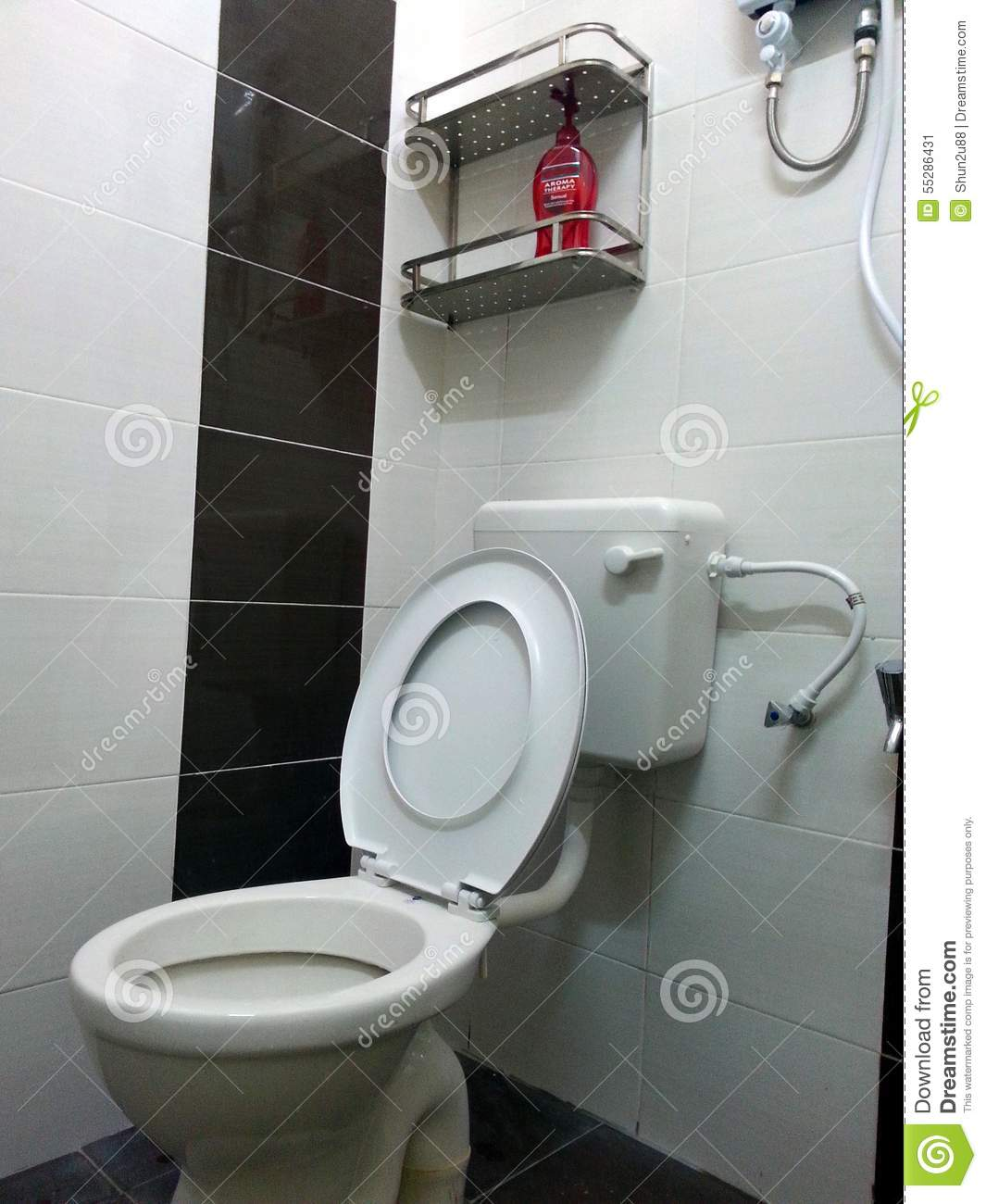 Interior Of Washroom, Wc, Toilette, Bathroom, Lavatory