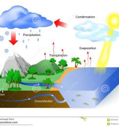 water cycle diagram the sun which drives the water cycle heats water in oceans and seas water evaporates as water vapor into the air labeled [ 1300 x 1107 Pixel ]