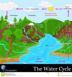 Water Cycle Stock Photos  Image: 31172153