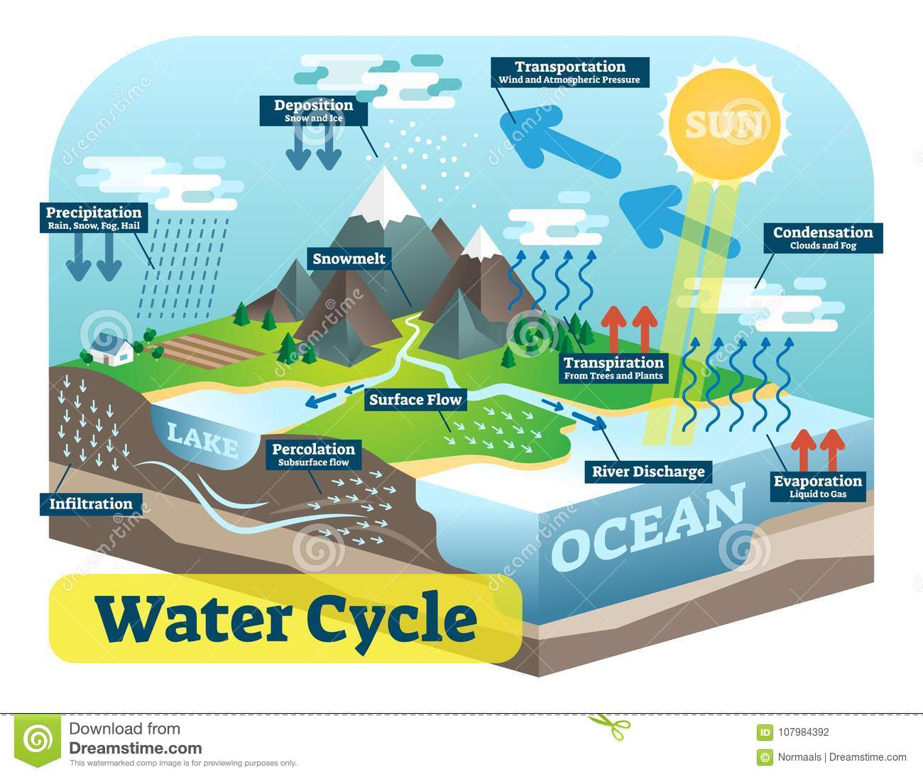 hight resolution of water cycle graphic scheme vector isometric illustration