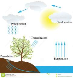 vector schematic representation of the water cycle in nature [ 1300 x 1390 Pixel ]