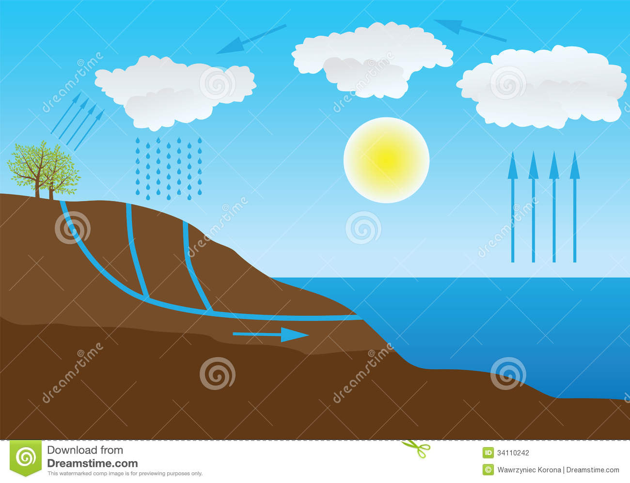 hight resolution of water cycle in nature