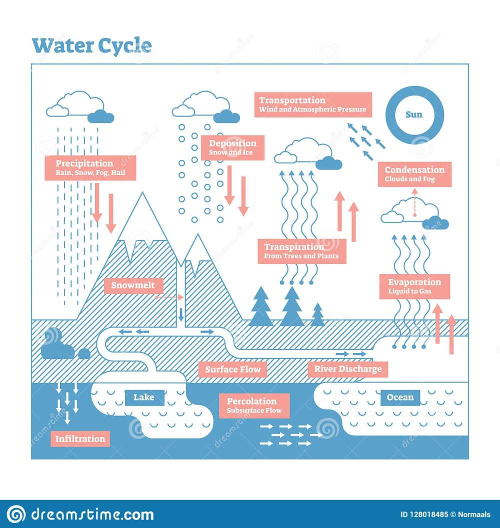 medium resolution of water cycle vector illustration diagram geo science ecosystemwater cycle vector illustration diagram geo science ecosystem scheme