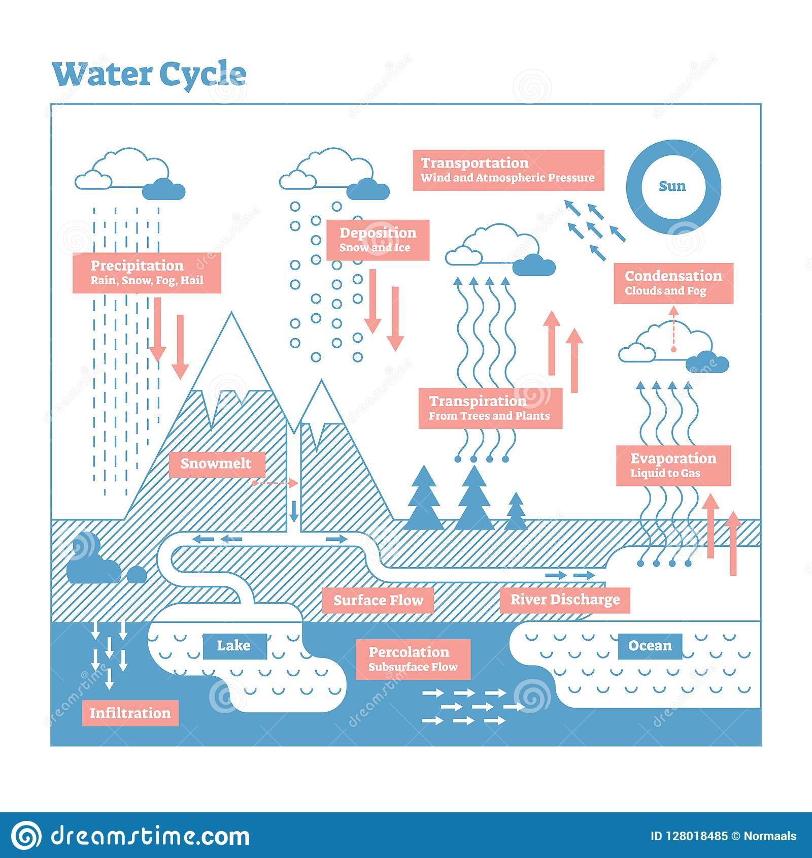 hight resolution of water cycle vector illustration diagram geo science ecosystem scheme