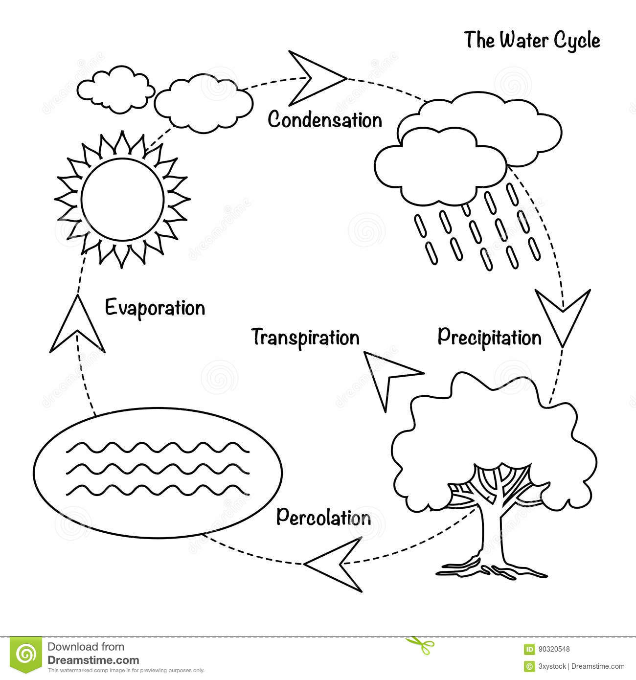 The Water Cycle Stock Vector Illustration Of Circuit