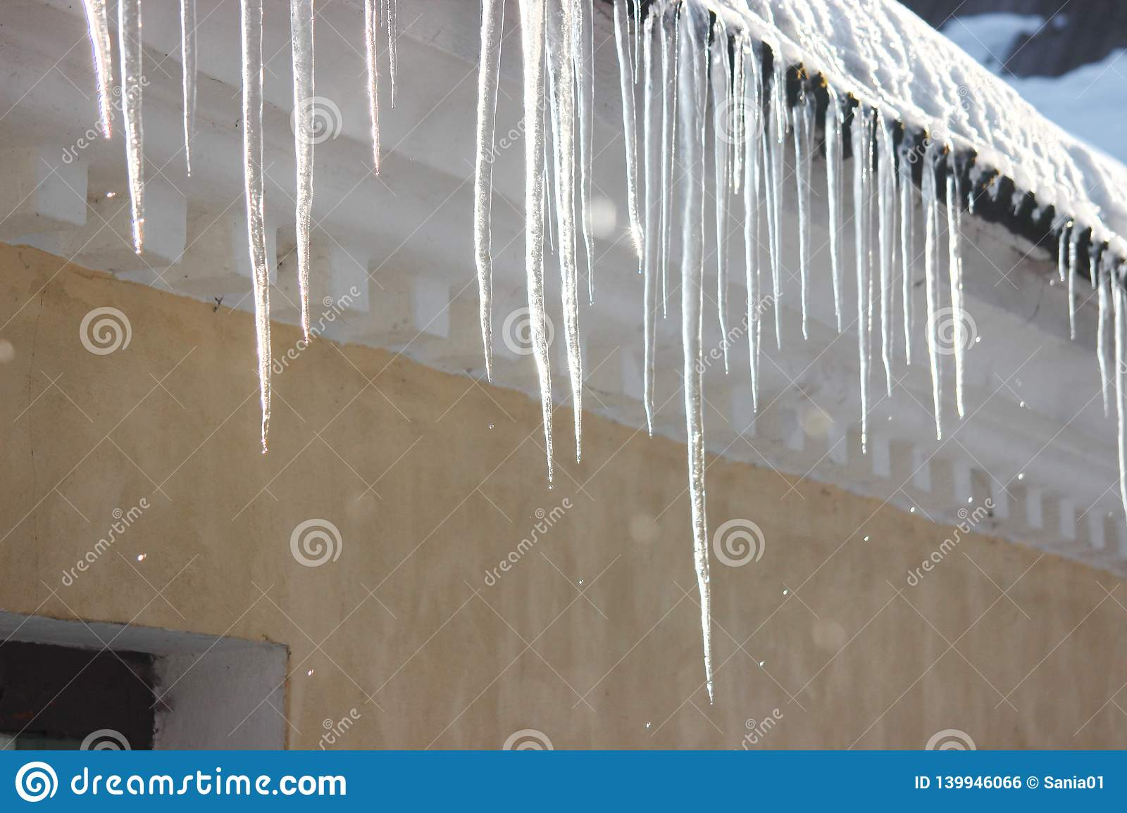 Water Drops On The Roof Icicles Melt Under Influence Of