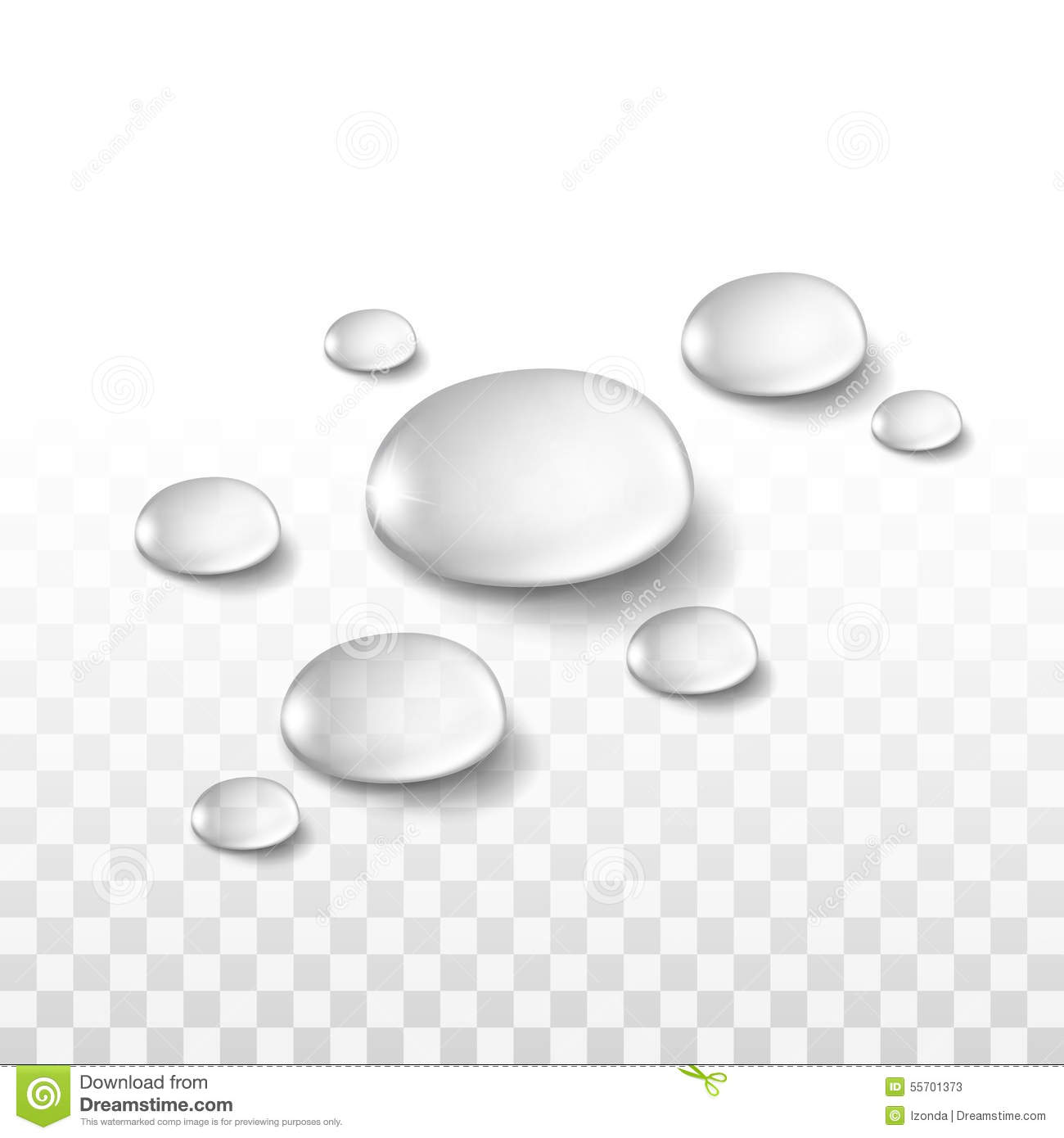 Raindrops Falling On Flowers Wallpaper Water Drops Set On Transparent Background Stock Vector