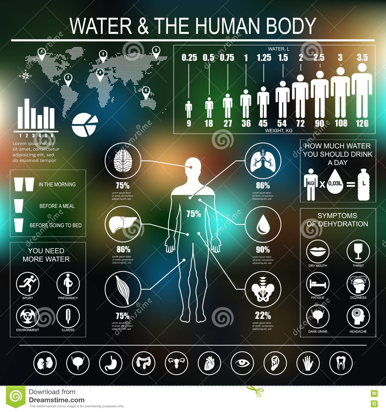 Water And Human Body Infographic On Dark Background Stock