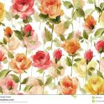 Watercolor Painting Of Beautiful Flower Wallpaper Stock Illustration Illustration Of Fresh English 39849910