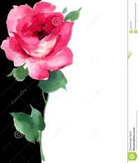 Watercolor Red Rose Floral Painting Art Deco Black And ...