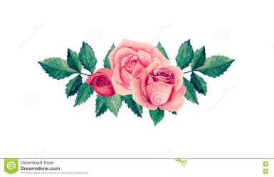 vector clipart watercolor roses pink flowers bouquet clip illustration background rose floral arrangement water cute graphics stripes drawings valentines preview