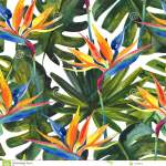 Watercolor Tropical Seamless Pattern With Bird Of Paradise Flower Monstera Palm Leaf Stock Illustration Illustration Of Exotic Floral 114538930