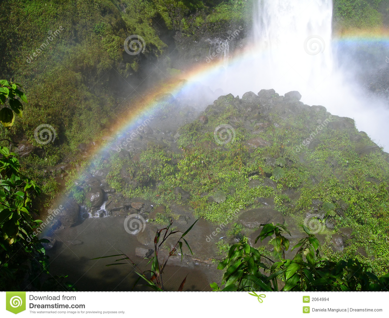 The more fertile the soils and higher the rainfall, the more complex the rainforest structure and diversity. Waterfall In Equatorial Rainforest With Rainbow Stock Photo Image Of Cascade Ecuadorian 2064994