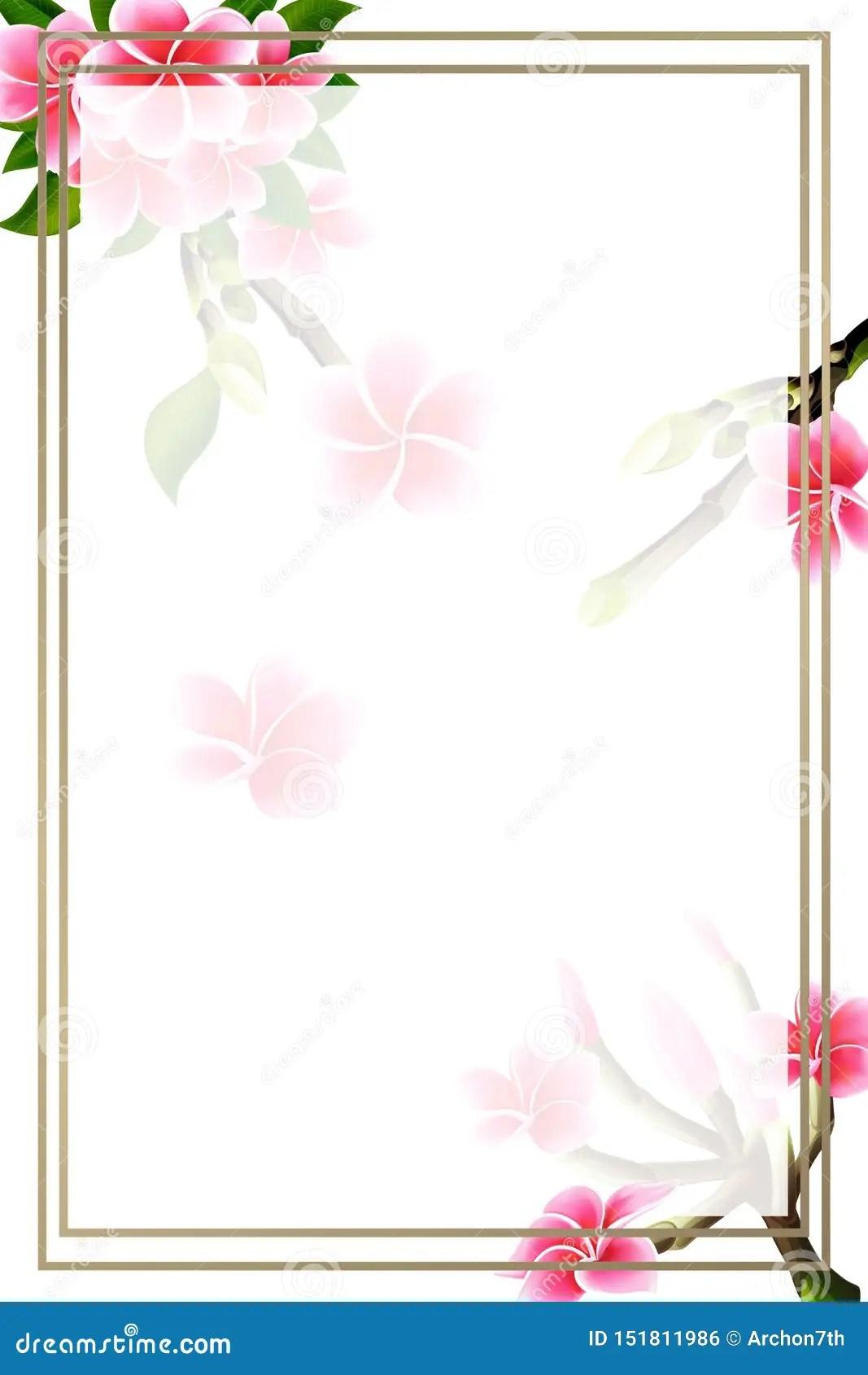 https www dreamstime com wedding invitation card floral plumeria frame lettering postcard template wedding invitation card floral pink plumeria image151811986